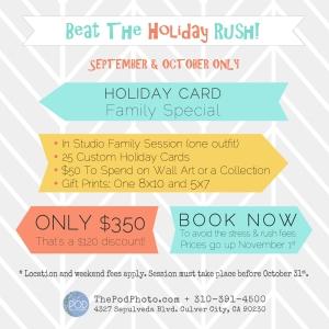 2014 Holiday Promo web