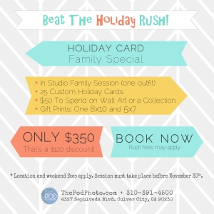 2014 Holiday Promo v2