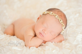 classic-girly-newborn-pictures